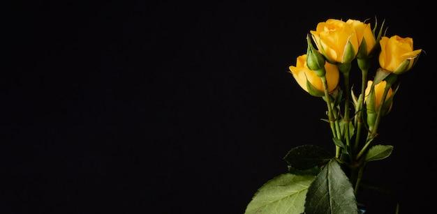 コピースペースと花瓶の黄色いバラ 無料写真