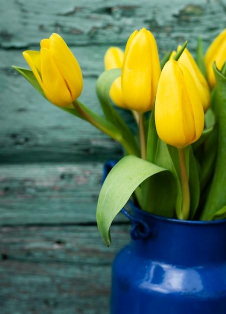 黄色のチューリップの高角花束 無料写真