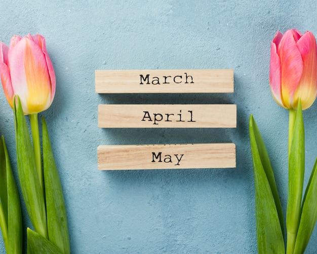 チューリップと春の月のタグ 無料写真