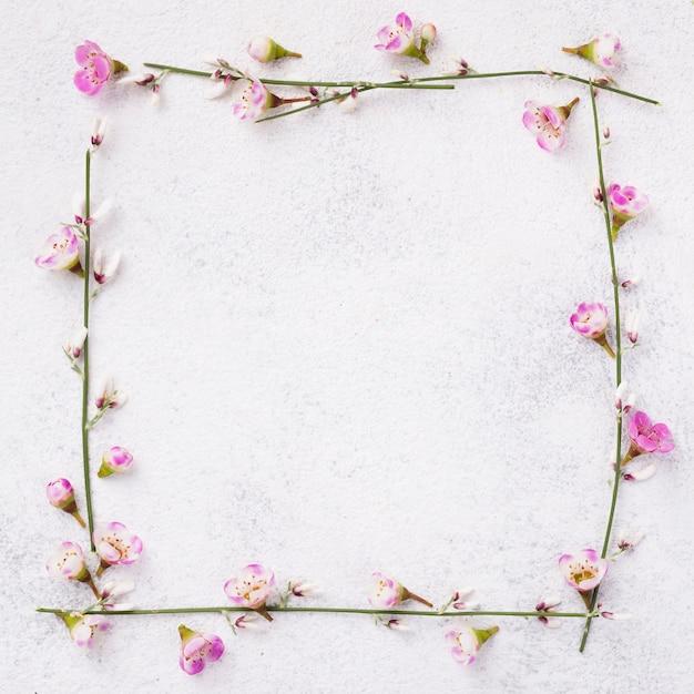 花が咲くフレーム 無料写真