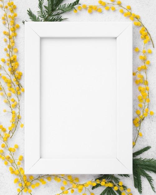トップビューの春の花とフレーム 無料写真