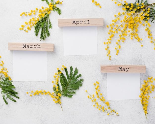 花の枝と春 無料写真