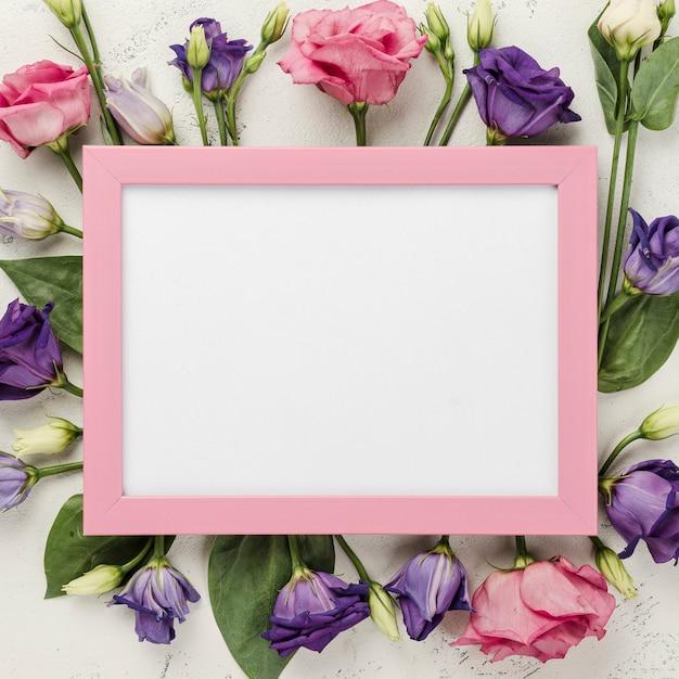 ピンクのフレームとバラフレーム 無料写真