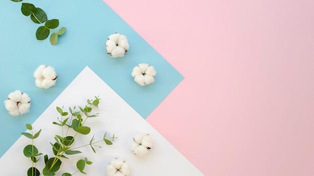 綿のアイテムと葉のあるフラットレイフレーム 無料写真