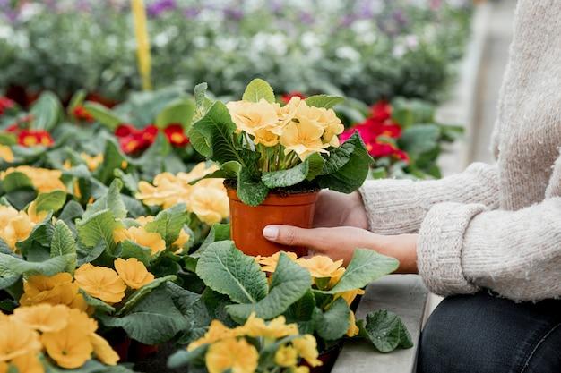 Крупным планом женщина с цветочным горшком Бесплатные Фотографии