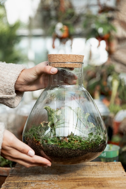 Крупным планом женщина, держащая банку с растениями Бесплатные Фотографии