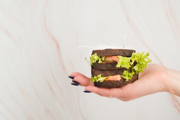 手でおいしいサンドイッチ 無料写真
