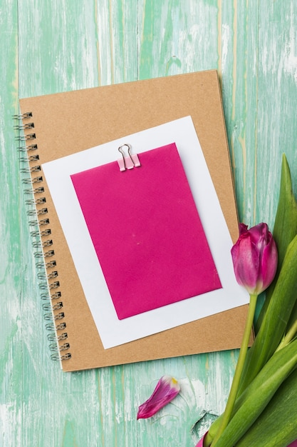 ノートブックフラットに空白のカードを置く 無料写真
