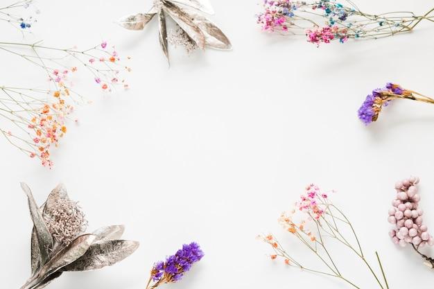 トップビュー花のフレーム 無料写真