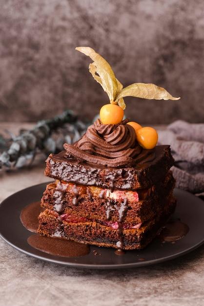 フルーツプレート上のチョコレートケーキ 無料写真