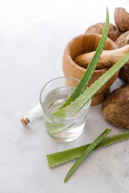 アロエベラの葉でグラスとココナッツ 無料写真