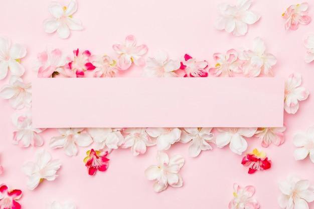 空白の紙とピンクの背景の上から見る花 無料写真