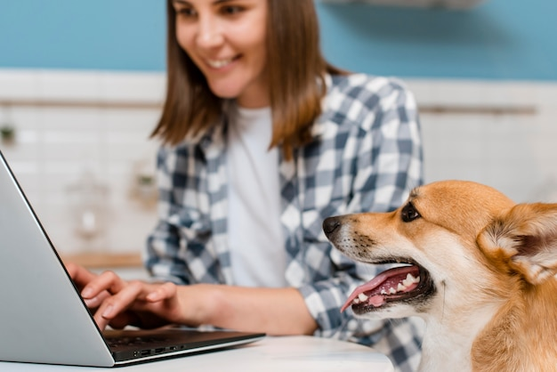 Вид сбоку собака наблюдает за работой владельца на ноутбуке Бесплатные Фотографии