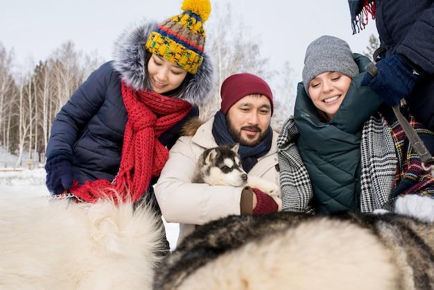 Друзья играют с собаками хаски Premium Фотографии