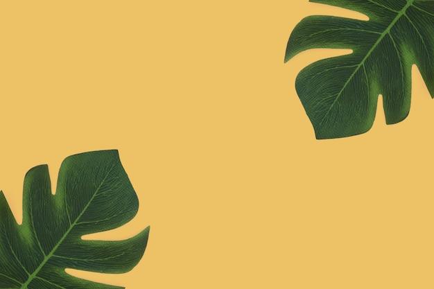 Тропические листья на желтом фоне Бесплатные Фотографии