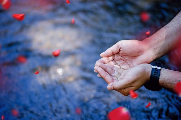 自然の滝から流れる手と水 Premium写真