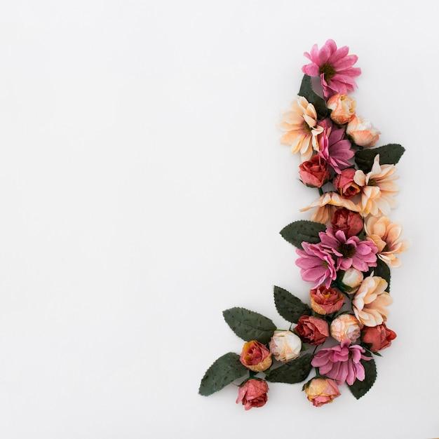 花と白い背景の上の植物の花弁で作られた美しいフレーム 無料写真