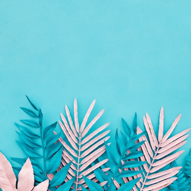 青の背景に青とピンクのヤシの葉 無料写真