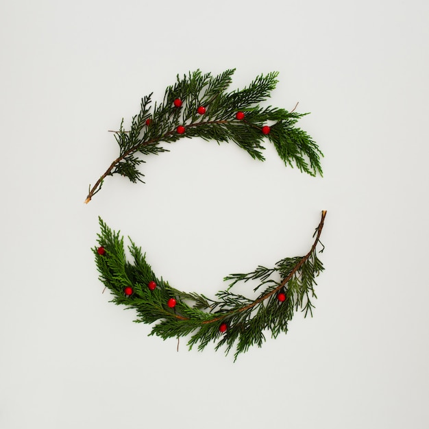 白のクリスマスパインの葉 無料写真