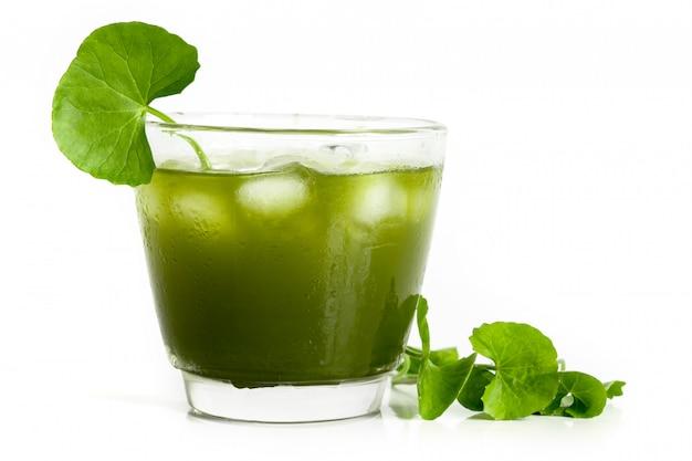 新鮮な緑のゴツコラ、ツボクサの葉と白のジュース Premium写真