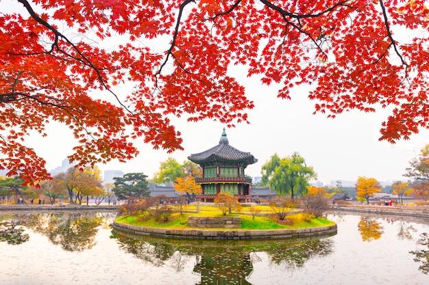 Осень во дворце кёнбоккун, в павильоне хянвончжон, в сеуле, южная корея. Premium Фотографии