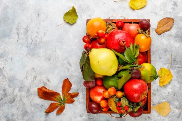 秋の果物。秋の感謝祭の季節のフルーツ、トップビュー Premium写真
