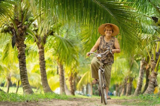 Старуха собирая кокос в кокосовой ферме в таиланде. Premium Фотографии