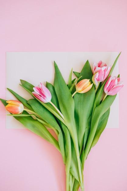 春の背景:ピンクの背景に囲まれたベージュのカードにピンクのチューリップ。スペースをコピーします。 Premium写真