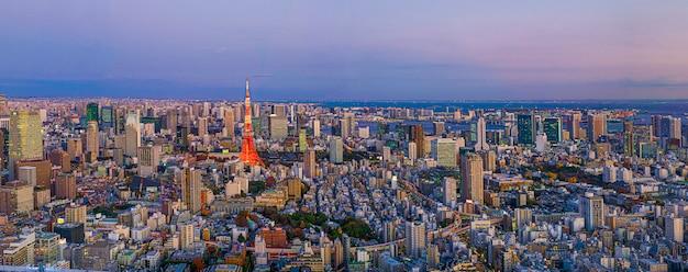 建築の超高層ビルと東京都の夕暮れの青い空の下の公園と近代都市のパノラマ。 Premium写真