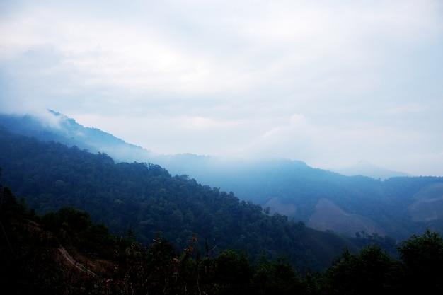 霧の背景を持つ山々。 Premium写真