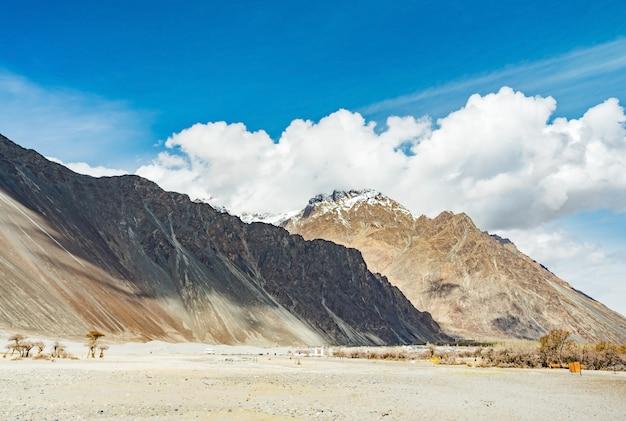 日光と曇りの青い空、インド北部のレーラダックのヌブラバレーとデザート砂丘 Premium写真