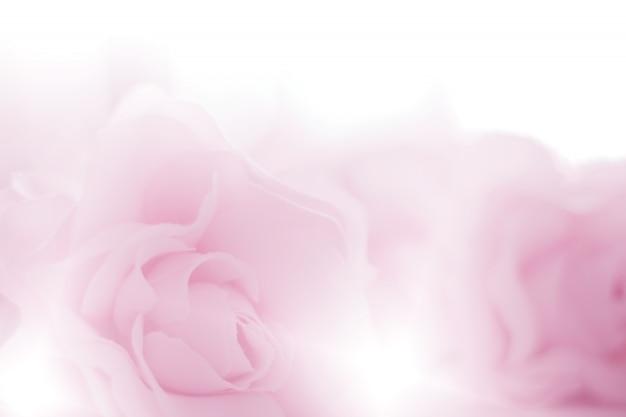 背景のグラデーションで作られたカラフルなバラの花生地。 Premium写真