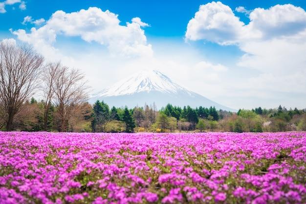 Красивые пейзажи величественной горы фудзи Premium Фотографии