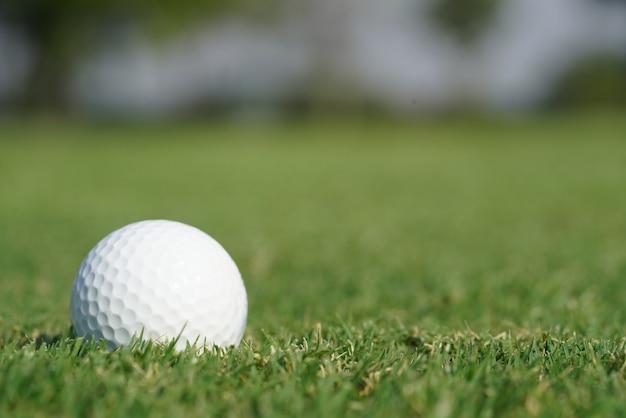 緑の芝生の上のゴルフボールのクローズアップ Premium写真