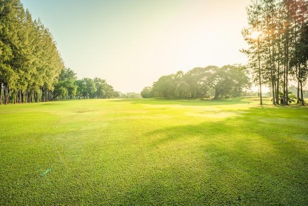 風景緑色のゴルフと朝の太陽光線の草原 Premium写真