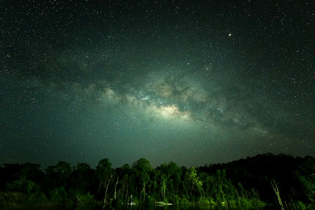 冬の森の上の多くの星と夜の空 Premium写真