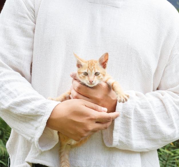 人は子猫を持っています。 Premium写真