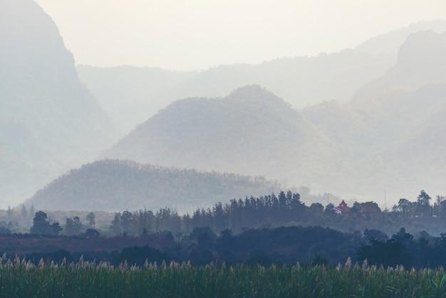 Оранжевый и желтый закат с силуэтами гор. градиент яркий фон природы Premium Фотографии