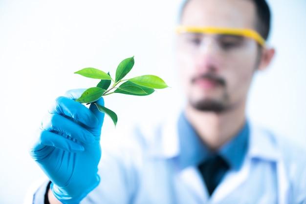 科学者は化学実験室で、天然物抽出物、石油、バイオ燃料溶液をテストします。 Premium写真