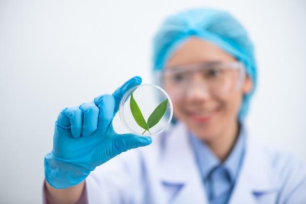 科学者は化学実験室で天然産物の抽出物、石油とバイオ燃料の溶液をテストします。 Premium写真