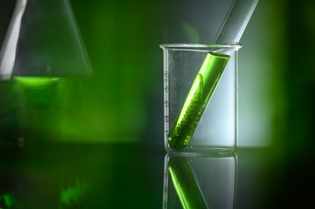 バイオテクノロジー研究所の藻類バイオ燃料チューブ Premium写真