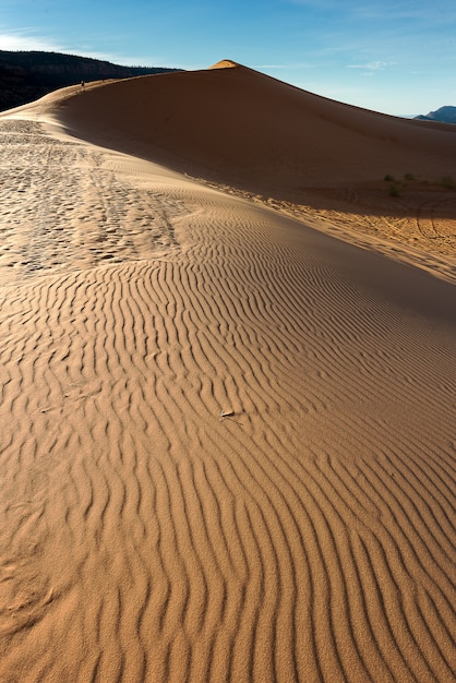 アリゾナ州の砂漠の風景写真 Premium写真