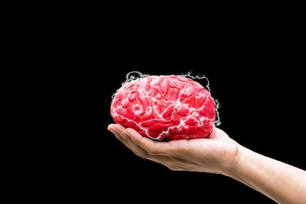Человеческая рука держит мозг концепции командования в памяти на черном фоне Premium Фотографии