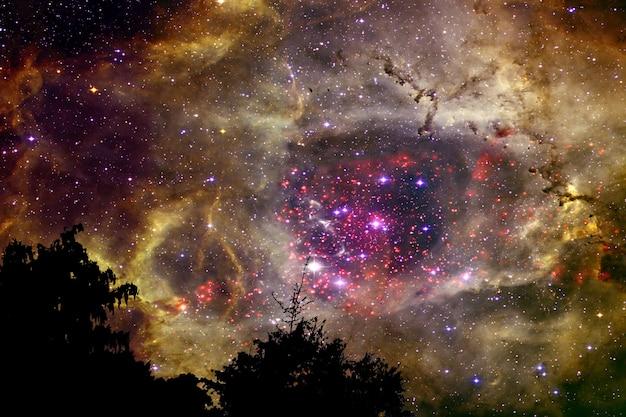 夜の雲空シルエット乾燥木に戻って金色銀河星雲をぼかし Premium写真