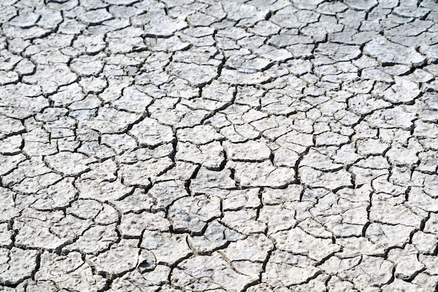 Почва сухая, поверхность потрескавшаяся Premium Фотографии