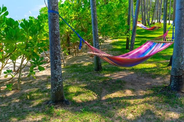 熱帯のビーチでヤシの木の間のハンモック。休日やリラクゼーションのためのパラダイスアイランド Premium写真