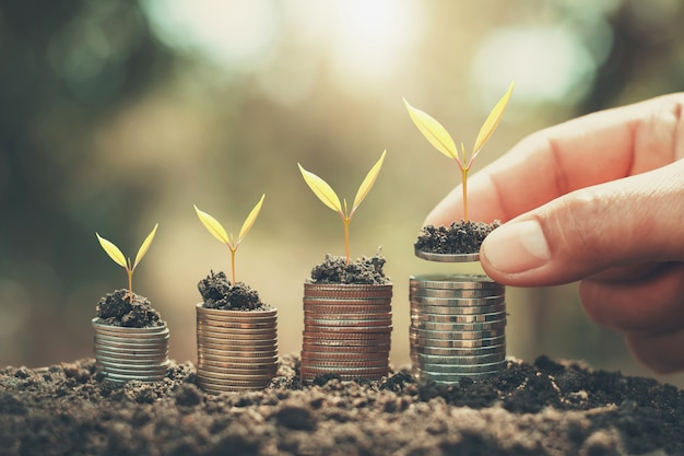 手のお金を節約し、コインの若い植物を成長させます。財務会計の概念 Premium写真