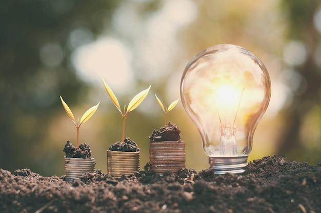 お金は土の上の電球と小さな木を育てた。省エネルギーと金融の概念 Premium写真