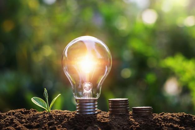 コインと若い植物の電球。節約の概念 Premium写真