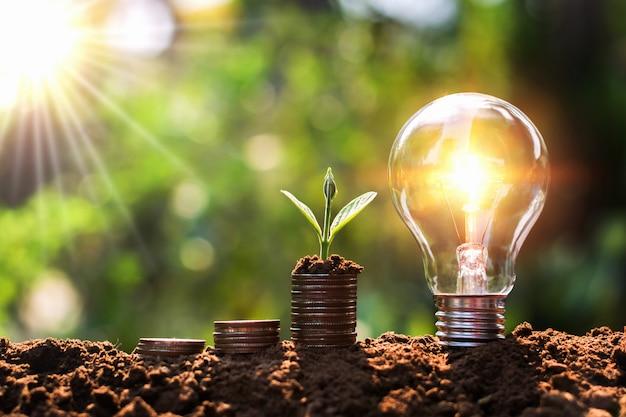お金のスタックで成長している若い植物が付いている土の電球。金融とエネルギーの節約の概念 Premium写真